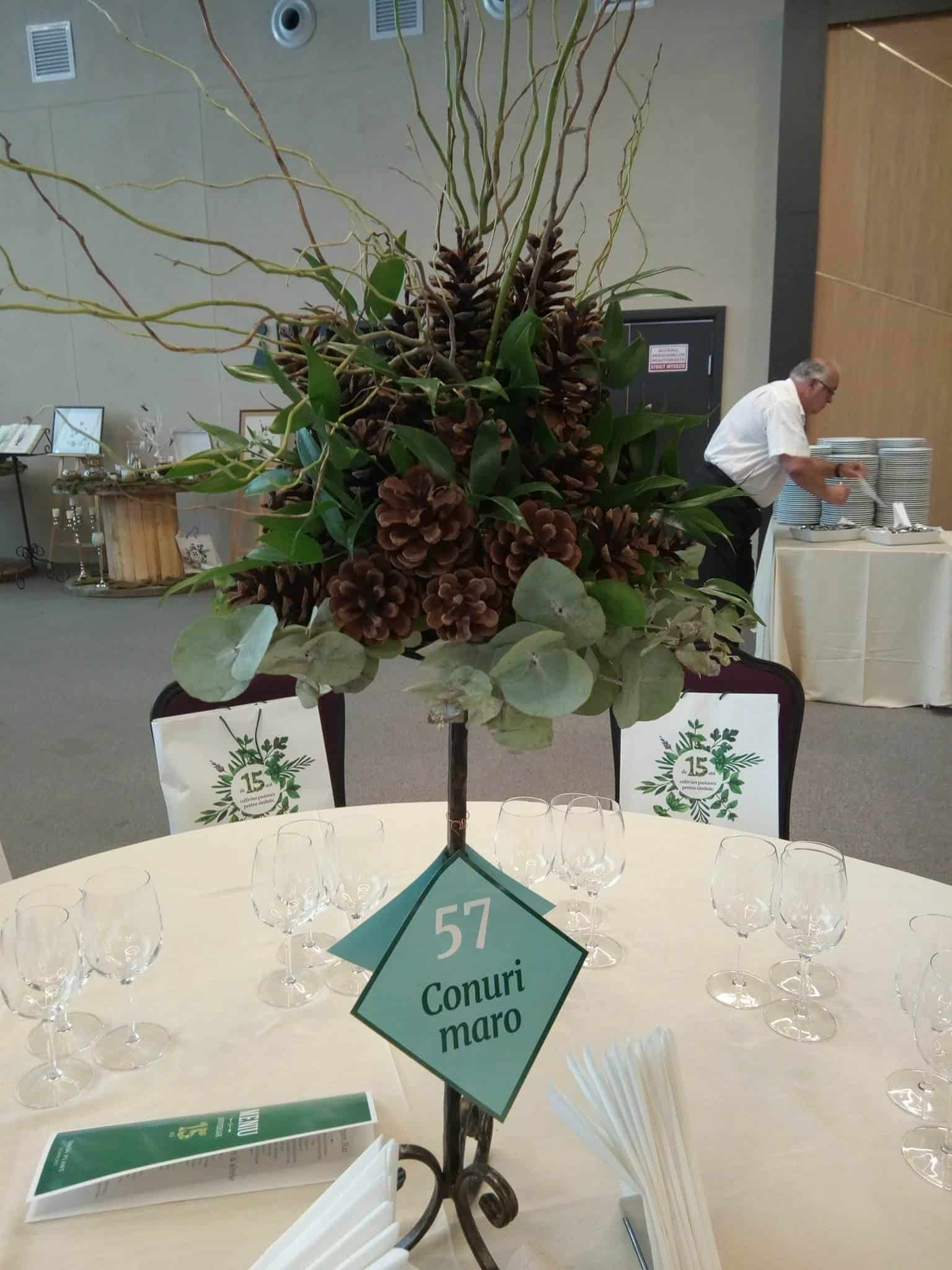 Dacia Plant flori 5
